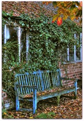Seeing places attached to my childhood memories always puts a smile on my face. (Pink Flutterby   OFF) Tags: park old blue autumn green window leaves childhood canon bench scary child seat bricks rustic memories ivy powershot haunted spooky memory hdr haunt keeper shabby sx120is sx120