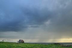 Rain (Sushanta - paper, scissors, void) Tags: ocean sky house rain weather landscape iceland e reykjavk gardenangelica angelicaarchangelica