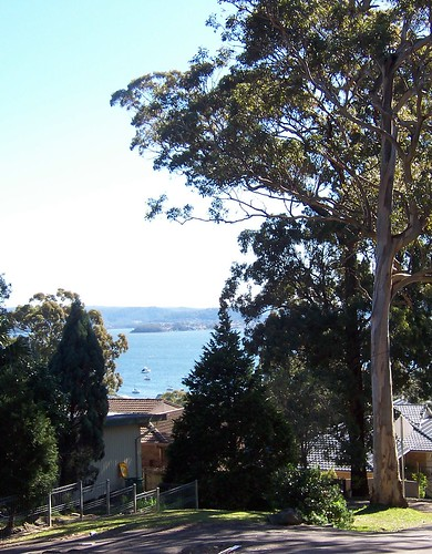 View to Gosford from Kapala Avenue Saratoga