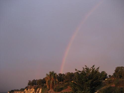 cove rainbow