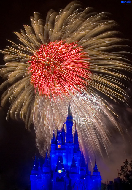 Walt Disney World BIRTHDAY Wishes! (Explored)