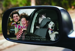 Holiday Card 2008 (arravan314) Tags: santa christmas dog holiday smile scarf cat puppy mirror kitten driving view wind side objects card than closer appear