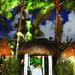 Private Tiki Cabana Dinners