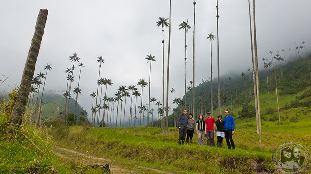 Valle de Cocora With Our New Friends: Boris, MuiMui, Jo, Ryan, Ellie, and Jan