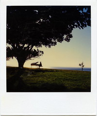 You Hum It, I'll Play It (tobysx70) Tags: ocean california toby tree fall polaroid sx70 pacific piano grand malibu week hancock 2010 timezero roid roidweek tobyhancock