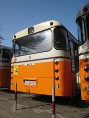 Man bus (mollyali) Tags: orange bus croatia dubrovnik