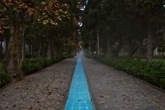 Iran_164_16-12-06 (Kelly Cheng) Tags: architecture garden persian iran story getty kashan fingarden baghefin pickbykc