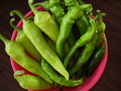 Peppers by the Peck!