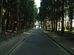 DSCF2963.JPG (piouhgd) Tags: sendai matsushima 2007081921