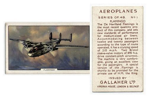 006-Flamingo. (ca. 1934-1939)