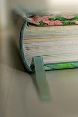 Book Spine & Ribbon (Dublin Rose) Tags: pink macro green book niceshot dof pages ribbon bookmarker bookspine beautifulshot diamondclassphotographer flickrdiamond artofimages
