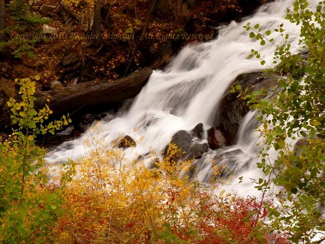 Autumn Cascade 2010