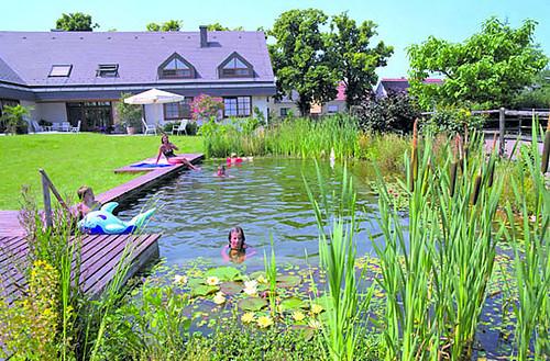 la buena noticia es que existen alternativas a la piscina de cloro la mejor de ellas quiz sea la piscina naturalizada basada en sistemas de filtrado - Piscinas Naturalizadas