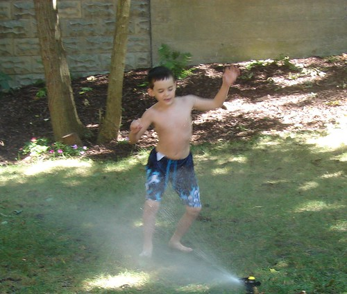 Sprinkler Fun 1