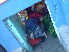 DSC03017.JPG (zorans) Tags: colombia lbs coffeeregion mba2004
