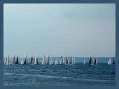 Regata sul mare del nord (DanielaNobili) Tags: sea boats mare barche panasonic helsingor nord 2007 regata copenaghen danimarca maredelnord