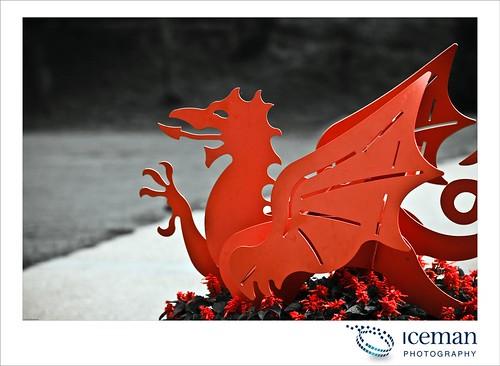 Cardiff Castle 140