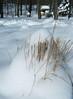 Несбытошные мечтания при +33С - 2 (shirley_turner) Tags: winter white snow cold ice зима снег мороз сосульки сугробы морозисолнце