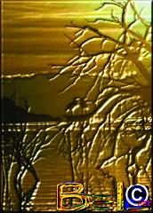 BEL©rei2010-00400 (BELcrei 2010) Tags: world family blue winter wedding friends brazil vacation portrait music usa canada verde green london love water ecology animal familia branco azul brasil fauna america mexico liberty photography amigo mar blog fantastic rainbow flora agua nikon espanha colorful asia europe artist peace photographer arte natural kodak natureza paz liberdade australia pit vida sound som fotografia now avenue bel artedigital mundo pantanal artista 2010 oceano amazonia passaros ecologia fantastica naturale exposiçao collores thebestofday belcrei belcrei2010