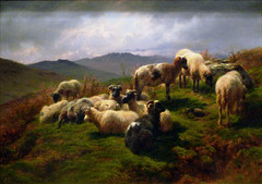 Rosa Bonheur, Sheep in the Highlands