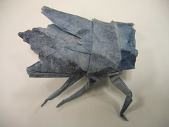 Horse Fly (PhillipWest) Tags: origami paperfolding papiroflexia