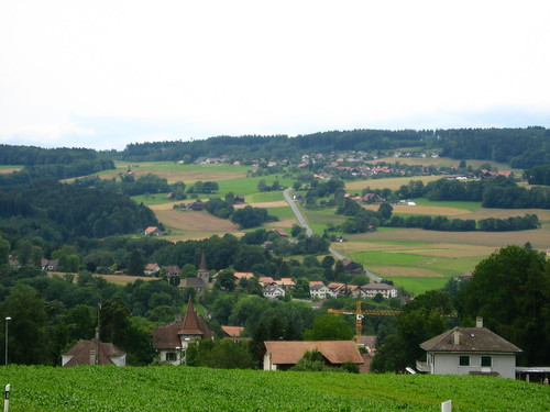 Hilly terrain for a skateboard (near Oron la Ville, Switzerland)