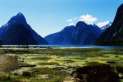 Milford Sound New Zealand (swisscan) Tags: blue newzealand sky mountain water analog sound milford naturesfinest blueribbonwinner