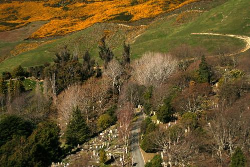 Wakapuaka Cemetery & Farmland