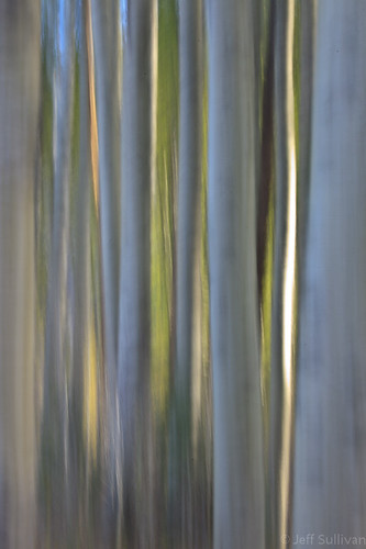 Aspen Abstract by Jeffrey Sullivan