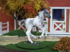 Cobble Stone 2 (alenekp) Tags: horse model modelhorse