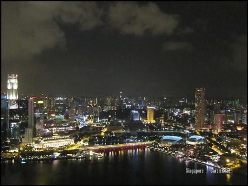 2010-10-31 新加坡  (194)Singapore_24