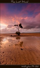 The Last Stand (itsgottabered) Tags: longexposure trees sunset seascape reflection clouds canon sand australia wideangle brisbane mangrove queensland bayside redsky 1022mm slowshutterspeed wellingtonpoint wello hitechgrads