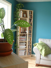 livingroom (Frangines) Tags: wood plant green home plante photo turquoise cd magazines decor bibliothque maison cushion cadre dcoration divan planche biblio frangine