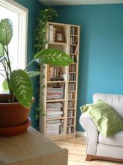 livingroom (Frangines) Tags: wood plant green home plante photo turquoise cd magazines decor bibliothque maison cushion cadre dcoration divan planche biblio frangine
