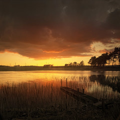 Calm before the storm (Stuart Stevenson) Tags: sunset orange sun reflection tree nature water rain clouds canon reeds landscape outdoors golden scotland still scottish naturallight wideangle romantic serene loch stormbrewing tranquil calmness gloaming windturbines clydevalley canon5dmkii stuartstevenson viewlargeandyoullseethem