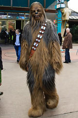 Chewbacca (Rare)
