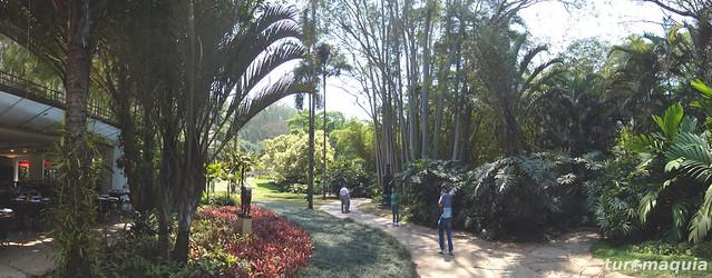 Inhotim - Minas Gerais