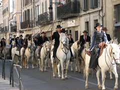 Save The Camargue: Procession - by kahala