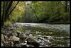 Yates Cider Mill creek (Ledio (mostly away)) Tags: autumn fall d50 landscape nikon michigan clintonriver peisazh nikonstunninggallery yatescidermill piesazh