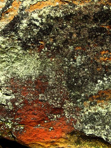 iron oxides and lichen