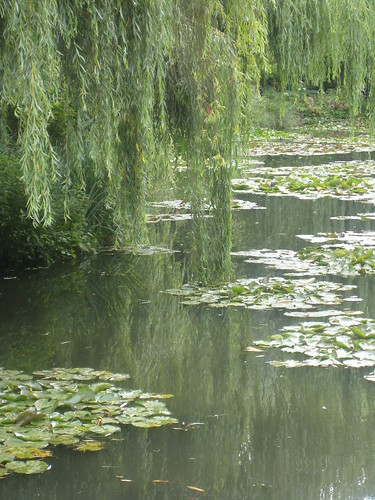 giverny June 28 2007 012
