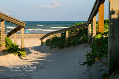 Beach Walkway_Chair