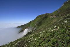 雲海と雪渓と