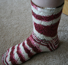 Crotalus Sock on the Hoof 081307