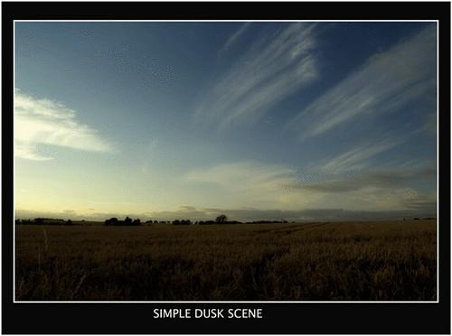 Simple Dusk Scene