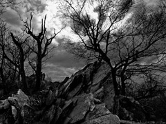 At the Edge of Mordor - Shadows of Middle Earth (Soller Photo) Tags: winter blackandwhite bw mountain tree nature rock nationalpark scary bravo hiking earth dramatic eerie spooky lordoftherings geology shenandoah drama middleearth mordor naturesfinest supershot platinumphoto superaplus aplusphoto superbmasterpiece diamondclassphotographer artlegacy sollerphoto betterthangood theperfectphotographer