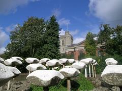 Inghilterra - Twickenham (Nespyxel) Tags: england mushrooms funghi twickenham inghilterra stonemushrooms nespyxel stefanoscarselli pleasedontusethisimageonwebsites blogsorothermediawithoutmyexplicitpermissionallrightsreserved