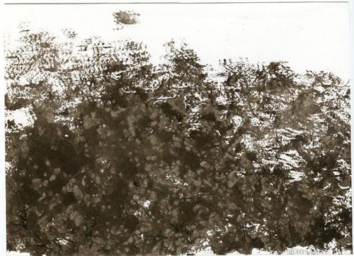 Black Felt Landscape III