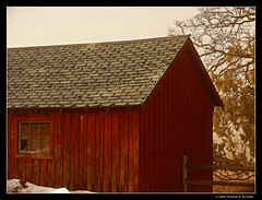 Red Shed (tom911r7) Tags: leica morning red fog colorado shed durango vlux1 tom911r7 thomasbrichta