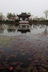 (hsalnat) Tags: china park flower nature garden nc pond wuxi lotus    liyuan   peachflower